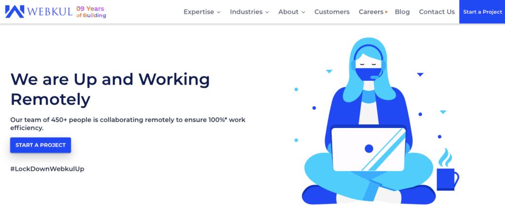 webkul ecommerce development company