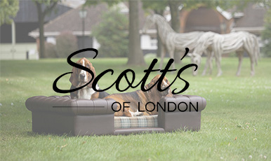Online store based on CS-Cart selling luxury sofas for dogs